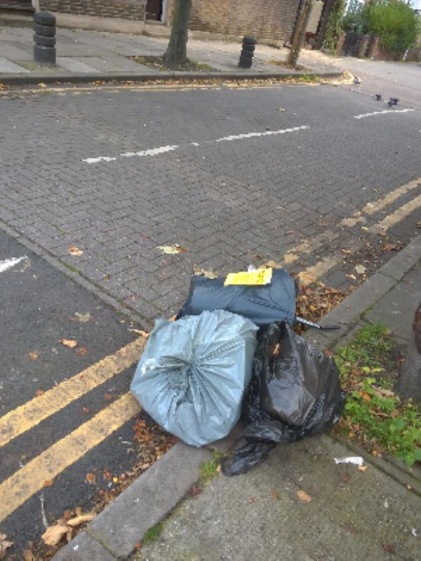 3 bags of domestic rubbish-8a Ham Park Road, London, E15 4HE