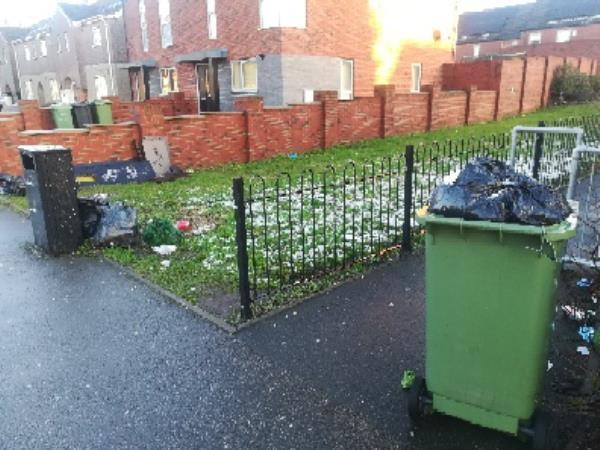 Public bin overflowing, black bags dumped around it, flytipped green bin on pavement, and wood pieces dumped on grass. -68 Thompson Avenue, Wolverhampton, WV2 3NR