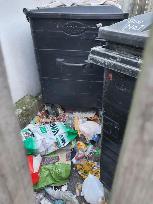 General household rubbish, please clean out the bin enclosure as well image 1-831b ROMFORD, Manor Park, E12 6EA