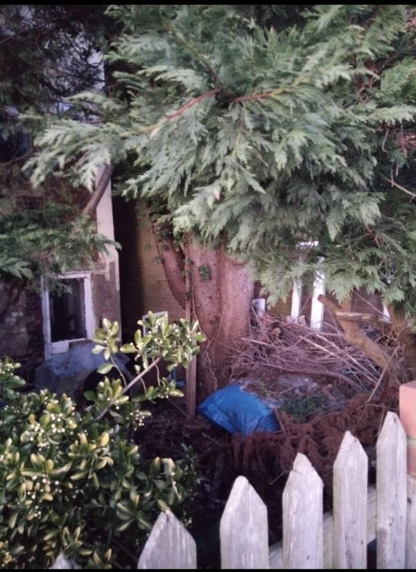 House is derelict & not lived in. Rubbish left in back garden & side of house. Been getting worse over 5 yr period. -23 Western Road, Aldershot, GU11 3PL
