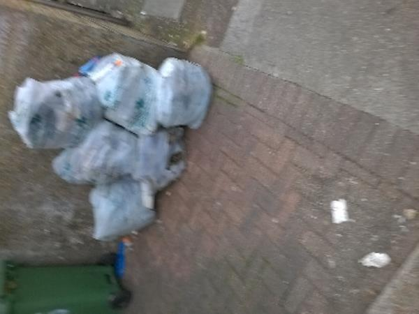 Six bags of garden waste fly tipped by No 2a Lathom Road E6 please remove ASAP image 1-12 Lathom Road, London, E6 2DU
