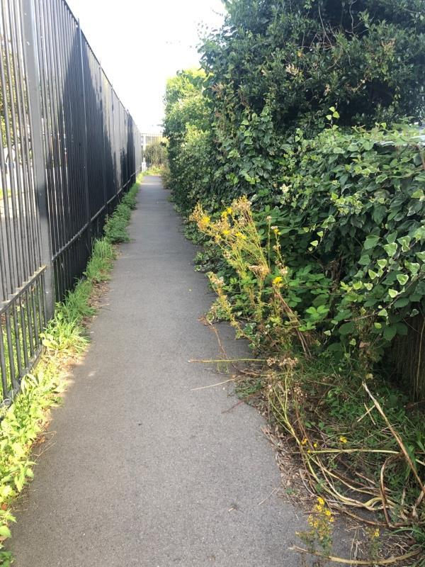 Overgrown path by school-30 Usk Road, Reading, RG30 4HG