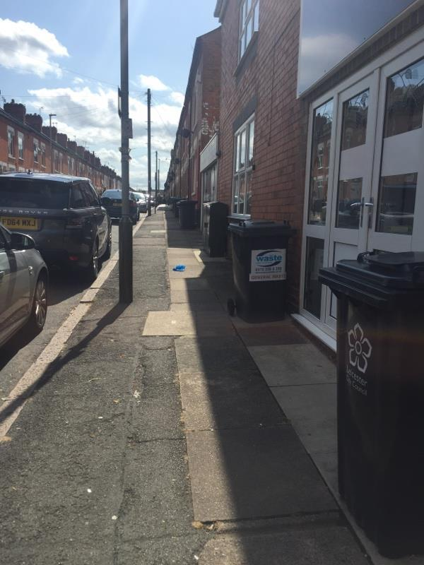 Bins out 24/7.-21 Luther Street, Leicester, LE3 0QH