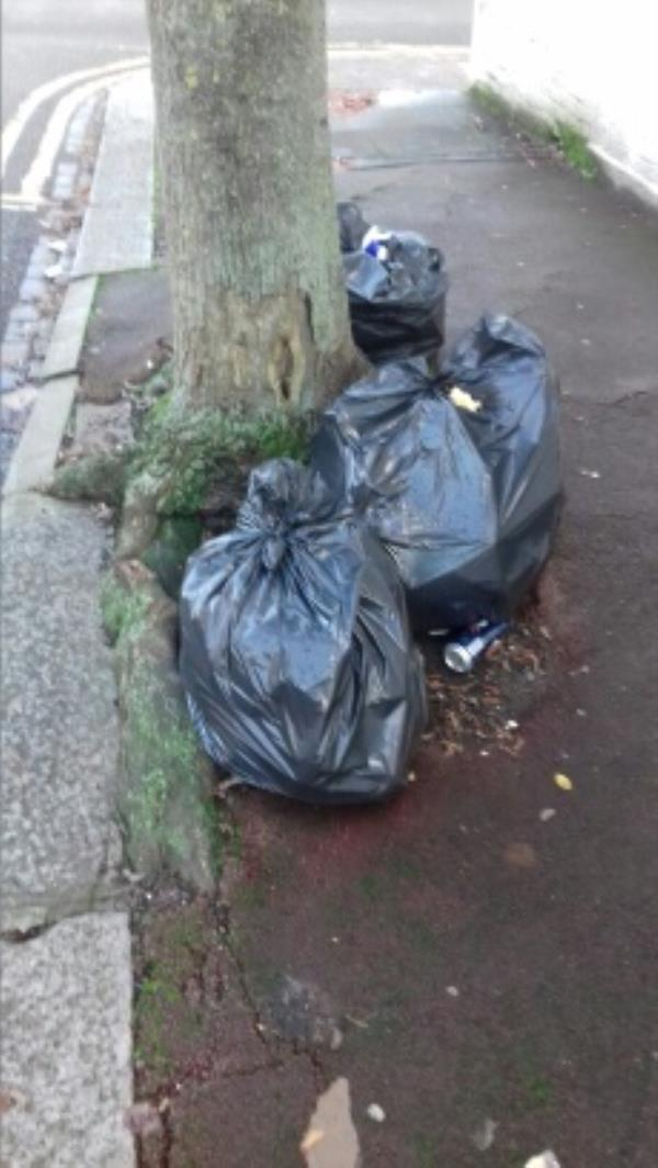 3 bags of domestic wastes dumped 10 Ravenhill Road junction with Fawn Road -33 Fawn Road, London, E13 9BN