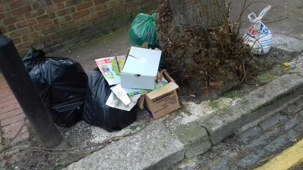 Several bags of wastes and a cardboard box dumped opposite 25 Oakdale Road E7-29 Oakdale Road, Green Street East, E7 8JU