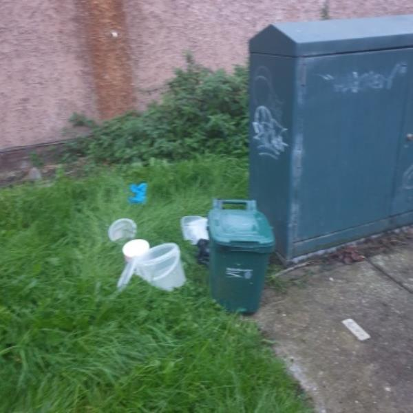 fly tipping in Dunstall Wood ent off Austin St-112 Glentworth Gardens, Wolverhampton, WV6 0SQ