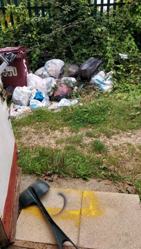 Over the last few days we have had bags of rubbish left outside our shop bin area and even rubbish stuffed into our already full bins.  -526/528 Northumberland AVe, REading, RG2 8NY