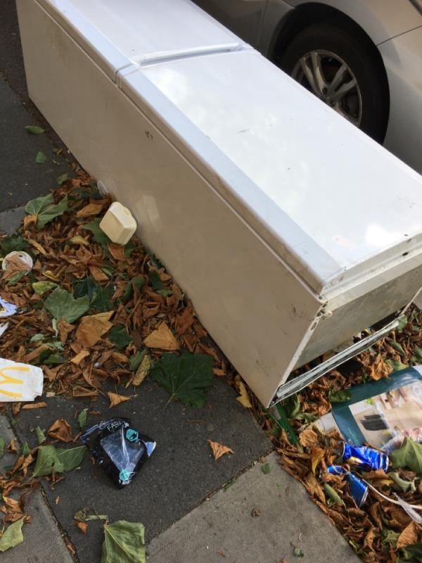 Rubbish needs removing -8 Washington Road, East Ham, E6 1AJ