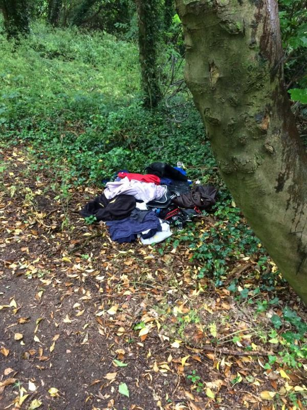 A second pile of rubbish 15m further up the pathway to Arthur Newbery Park, entrance corner of Kentwood Hill and Armour Hill-Armour Hill, Reading RG31 6AD, UK