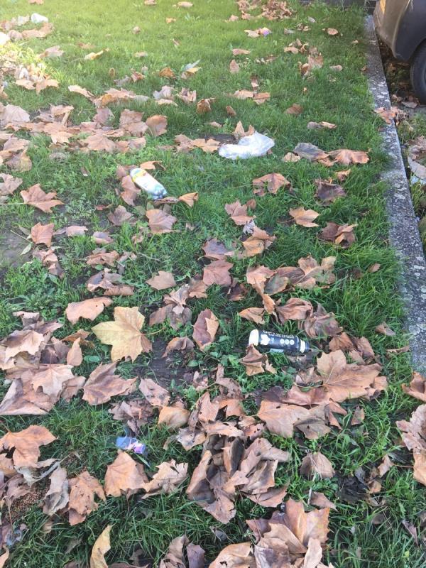 Audley Drive is a mess and needs sweeping. Leaves have been left and litter is mixing in image 2-South Lodge, 1 Audley Drive, London, E16 1TP