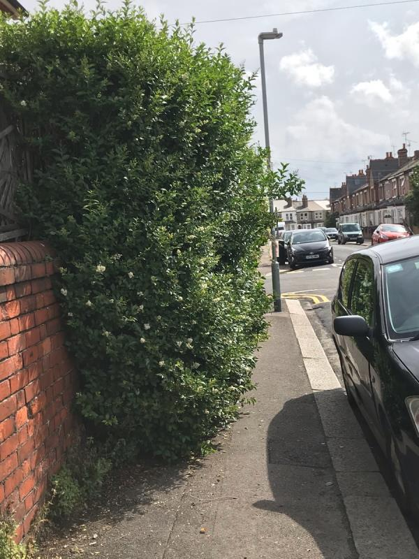 It's very hard to walk down the pavement on the corner of Radstock Rd especially with a buggy. It's even worse on the Virginia creeper side near the lamppost. Almost impassable. -11 Manchester Road, Reading, RG1 3QE