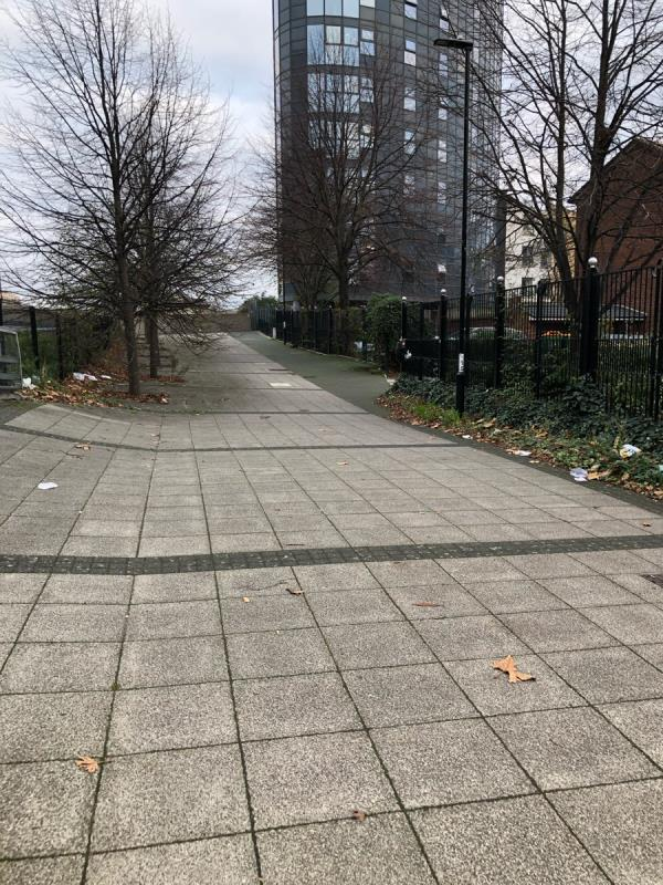 Cut through to Oxford Road a lot of litter needs clearing.-56 Great Eastern Road, London, E15 1BB