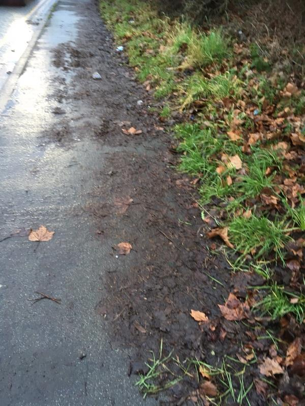 Pavement compacted with leaves making it very slippery especially when frozen. Reported many times-4 Northwich Road, Weaverham, CW8 3