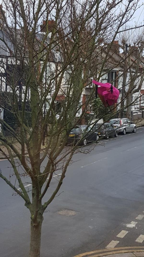 This pink backpack has been thrown up the tree, it is unslightly and I don't think the tree is happy either.   Would it be possible to have it removed please.   I appreciate this is not urgent but woukd be nice to have it removed before  Spring.  thank you-68 Henniker Gardens, London, E6 3JG