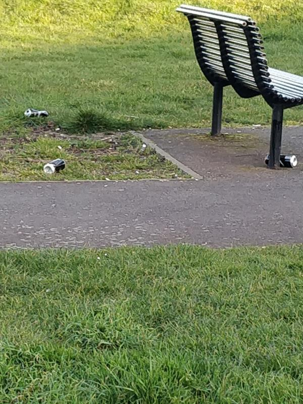 beer cans in the park -70 Odessa Road, London, E7 9BQ