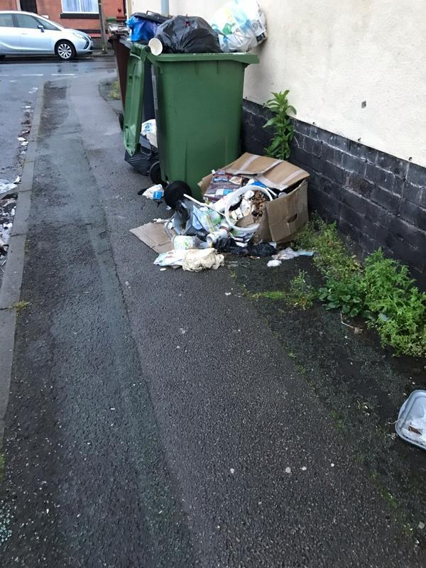 Those bins & boxed rubbish been there about 10 days. Its on corner of Shaw Rd & Wanderers Av Blakenhall-91A Wanderers Ave, Wolverhampton WV2 3HW, UK