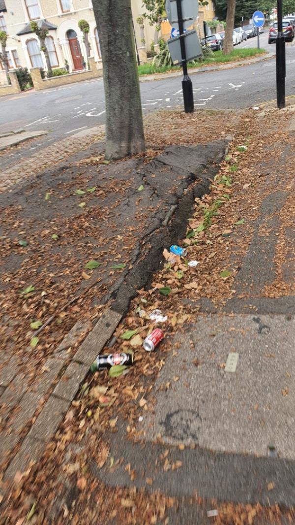 Litter-47 Richmond Rd, London E7 0PA, UK