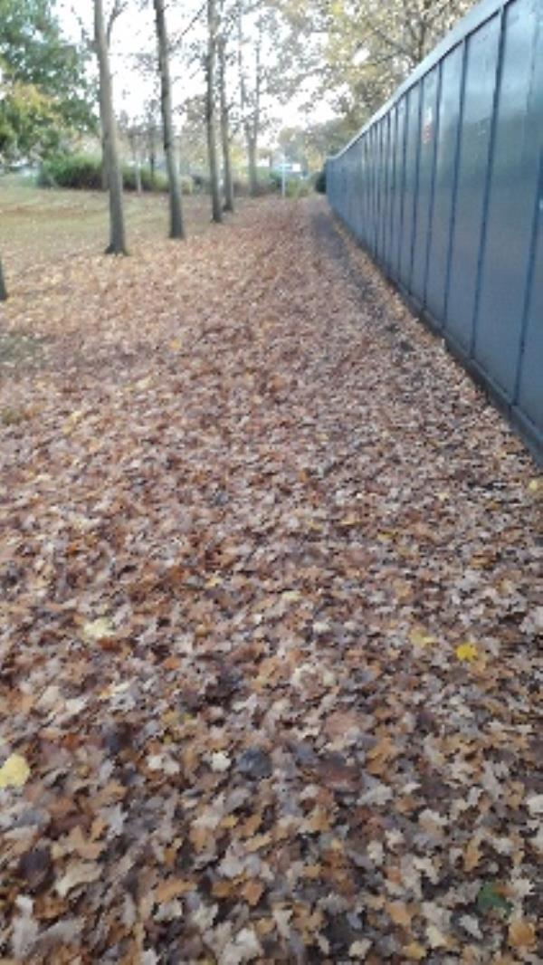 please clear leaves from path to library-Police Station, Pinehurst Ave, Farnborough GU14 7LF, UK