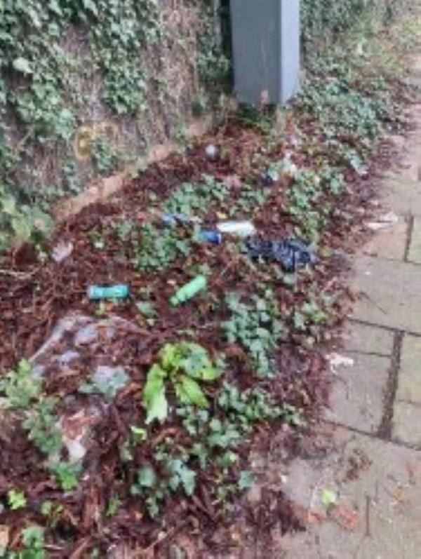 Please clear litter from grass verge-23 Amblecote Road, London, SE12 9TA