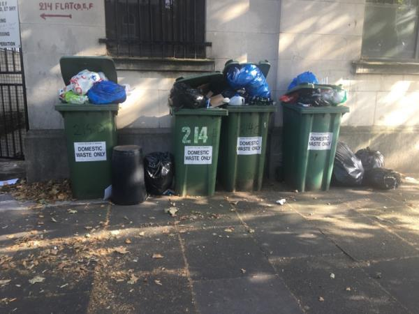 214D the bins are overflowing  image 1-214 Romford Road, London, E7 9HY