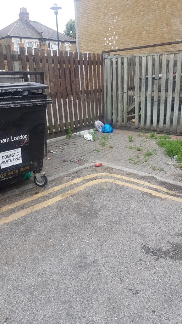 General household waste, as you can see signs don't work, need CCTV for repeat offenders image 2-831B Romford Rd, Manor Park, London E12 6EA, UK