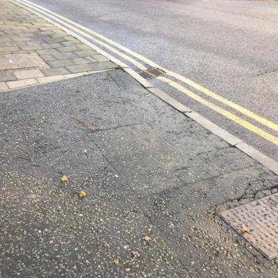 Dog poo-68 Manor Road, London, N16 5BN