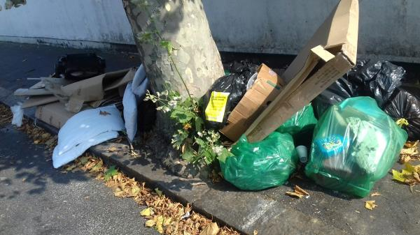 Cardboard boxes and bags of wastes dumped near 212 South Eskimo Road -212 South Esk Road, Upton Park, E7 8HD