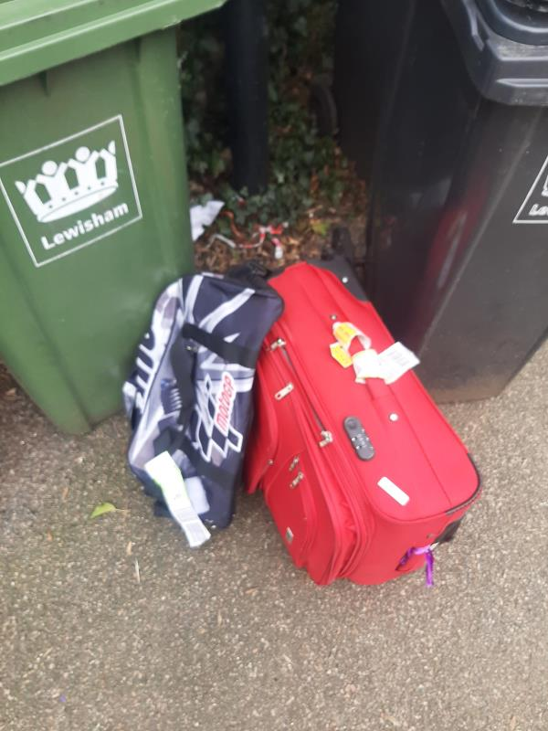 2 suitcases wiht names on them, and a metal bin left by the bins.-24 Oaksford Avenue, London, SE26 6AR