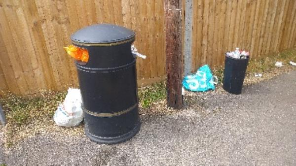 Bin full of household waste and household waste around bin no evidence taken -223 Hartland Road, Reading, RG2 8DN