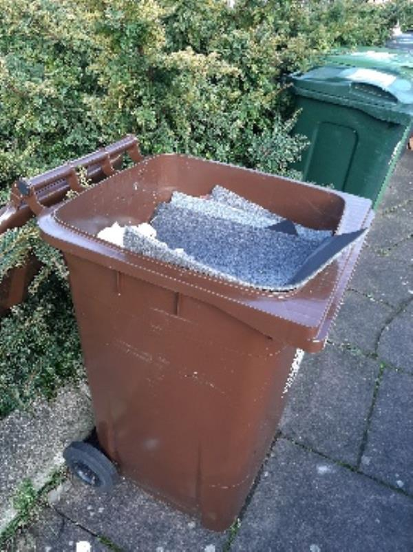 don ball homes first,  top of the steps between  Westmoreland  and Yorkshire court  a brown wheelie bin full of carpet  and a large stack of pine shelving  has been  dumped-Lincoln Court Rockhurst Drive, Eastbourne, BN20 8UY