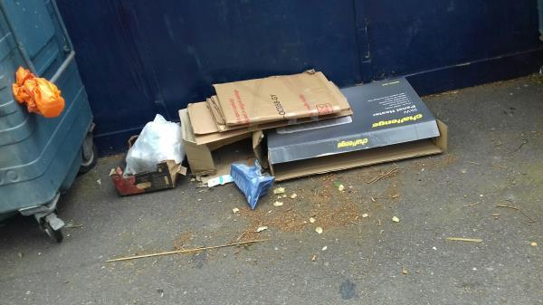 Cardboard boxes dumped near the wheelie bins opposite 206 Chargeable Lane E13 -204 Chargeable Lane, Plaistow, E13 8DW