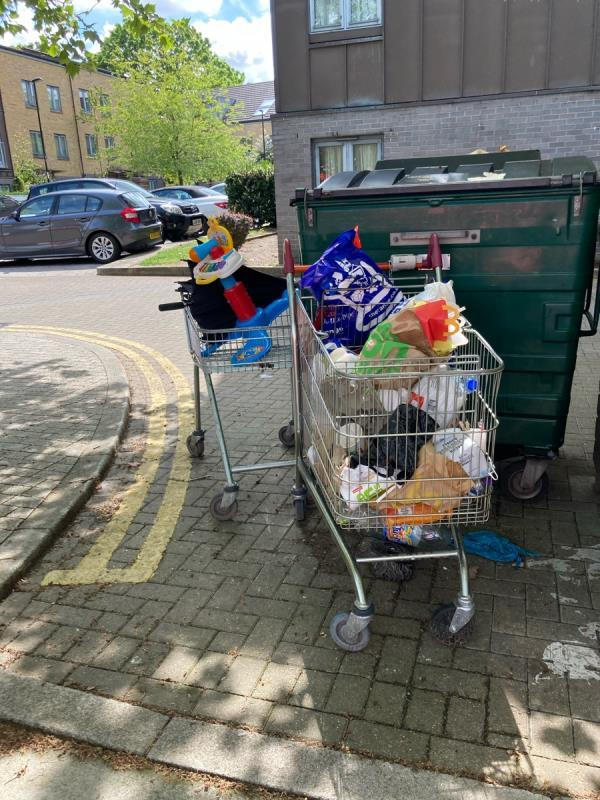 Dumped trolleys filled with rubbish-39 Besson Street, New Cross Gate, SE14 5AE
