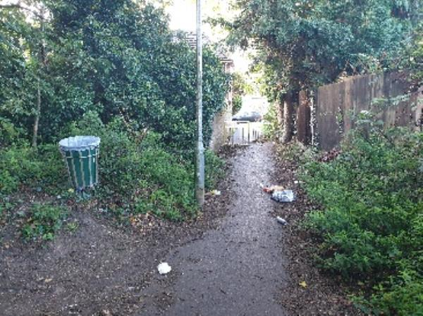 Rubbish on path near waste bin in Courage Park, near exit to Wensley Road.-10 N Lodge Mews, Wensley Rd, Reading RG1 6EF, UK