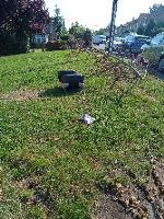 please remove fly tipping corner of Lyndhurst and Ringwood rd image 1-54 Ringwood Road, Reading, RG30 6UA