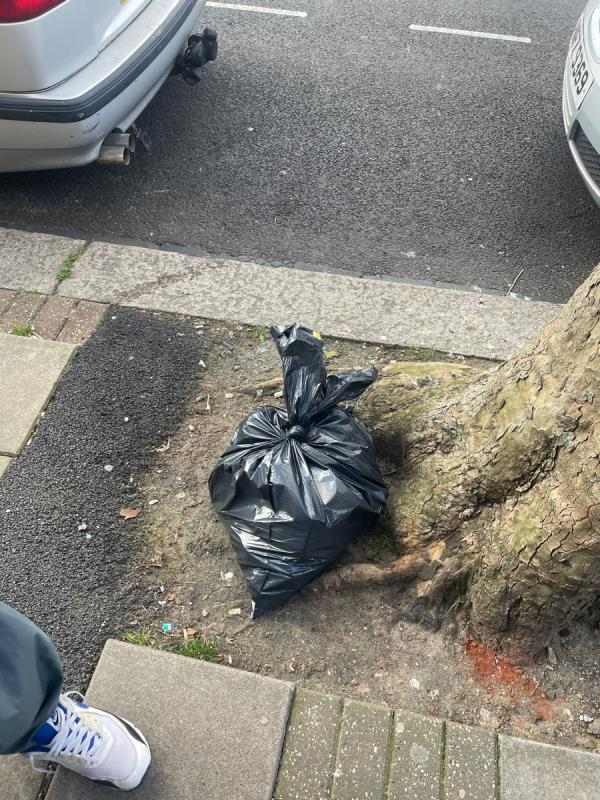 Rubbish  image 2-308 Katherine Road, Green Street East, E7 8PG