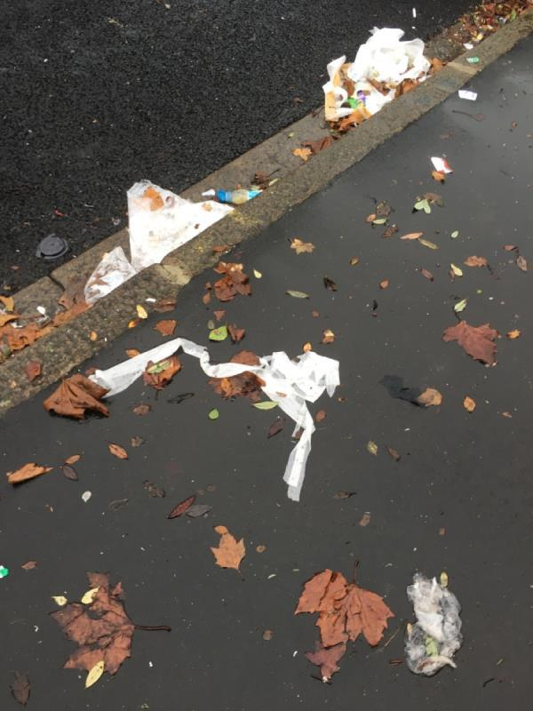 Major sweep required as Road is very dirty -107 Sheridan Road, London, E12 6QY