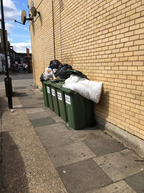 Bins overflowing making a fire risk. These bins are addressed as Plashet grove not for the flats but we have the risk???  Also rubbish by flats bins on yard-2a/2d Waterloo Road E6 1AP