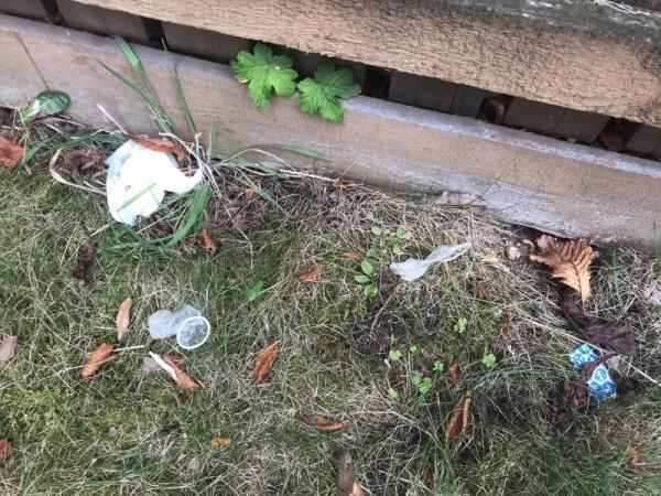 Used condoms, condom wrappers, baby wipes and human excrement, In garden of 168A Romford road. From ongoing prostitution that takes place in the garden of my property. Prostitutes enter garden at night and have been doing so for months.  image 2-166A Romford Rd, London E15 4LD, UK
