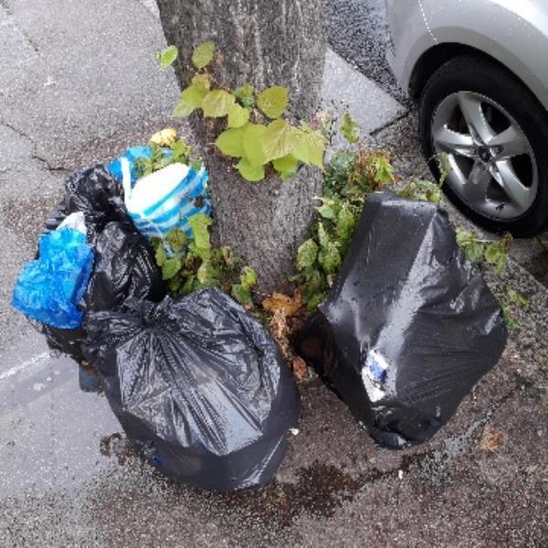 3 bags-298 Monega Road, London, E12 6TS