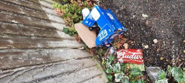 rubbish all down alleyway leading to ridgeway school just off cherry grove-29 Cherry Grove, Reading, RG2 7NF