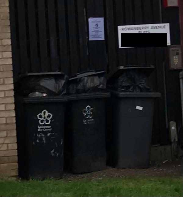 All bins overfilled again and open to vermin. 16-21 rowanberry Avenue  Flats.-29 Rowanberry Avenue, Leicester, LE3 6PN