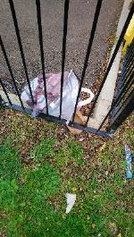 Litter pick required in park and all areas of Lowfield Road please  image 2-37 Orchard Grove, Reading, RG4 6NF