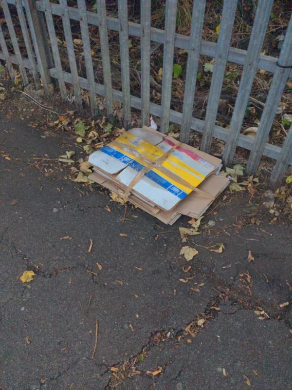 Fly-tipped cardboard black bags and breeze block on Nightingale Grove-67-69 Ennersdale Road, London, SE13 6EY
