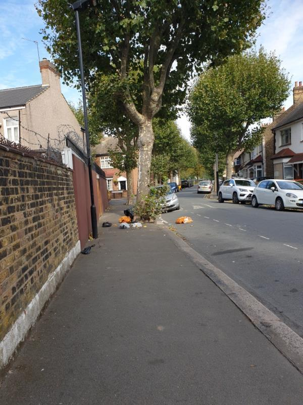 bags of rubbish all over the road-34 Mitcham Road, East Ham, E6 3LU