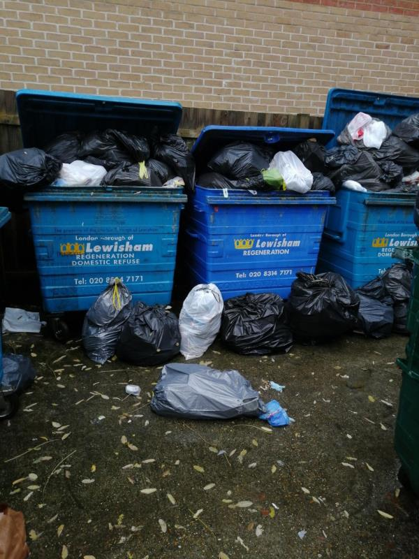 The bins have still not been emptied.  This is 2 weeks of waste.  Please could you collect the waste today-290 Grove Street, London, SE8 3RF
