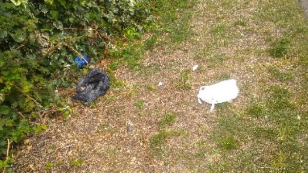 Flytipped raw meat no evidence taken -563 Basingstoke Road, Reading, RG2 0SJ