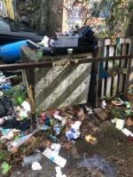 There has been so much rubbish dumped outside my business. It is very untidy and not good for my business. I would like this resolved as I am loosing so much work due to this image 1-77 Edward Pl, Deptford, London SE8 5PZ, UK