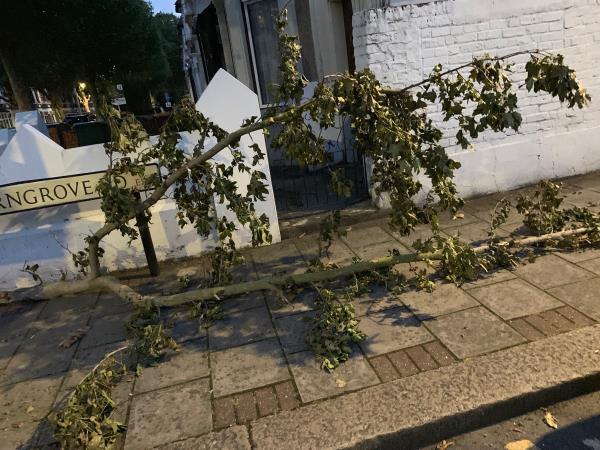 Following thunderstorms the other day big broken tree branch blocking access on pavement -62a Harold Road, London, E13 0SG