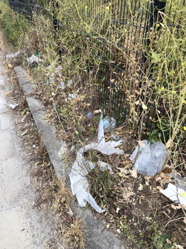 Lots of rubbish along the fence and green areas.-Rail Land At Temple Mills Temple Mills Lane, London, E20 2GL