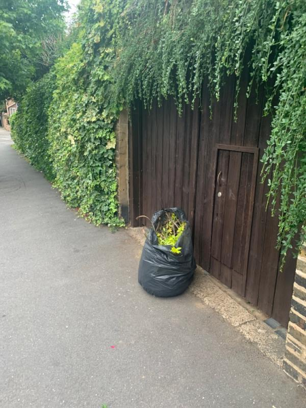 Dumped garden waste opposite 24 Clarence rd-24 Clarence Road, Manor Park, E12 5BB
